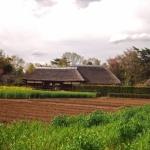 「畑や田んぼが付いている空き家」を活用するには?